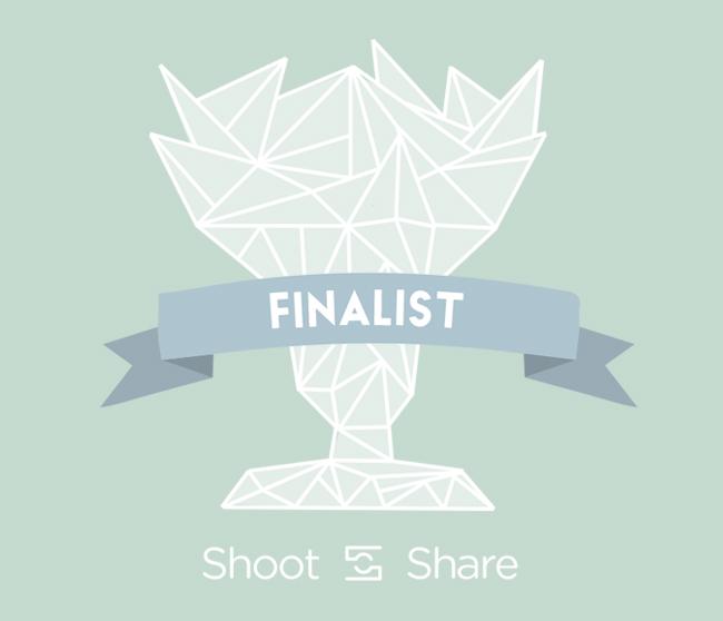 shootandshare